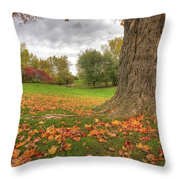 Autumn Tale Throw Pillow by Mircea Costina Photography