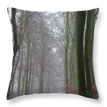 Autumn Woodland Avenue Throw Pillow by Gary Eason