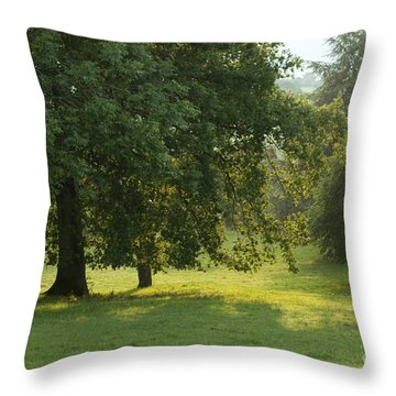 Back From The Meadow Throw Pillow by Angel  Tarantella