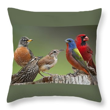Backyard Buddies Throw Pillow by Bonnie Barry