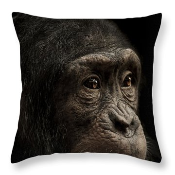 Baffled Throw Pillow by Paul Neville
