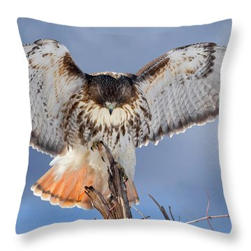 Balance Throw Pillow by Bill Wakeley