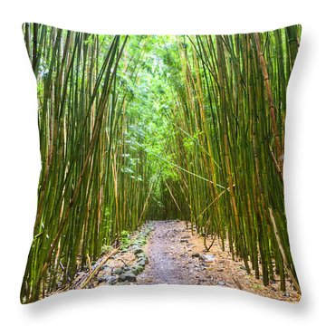 Bamboo Forest Trail Hana Maui 2 Throw Pillow by Dustin K Ryan