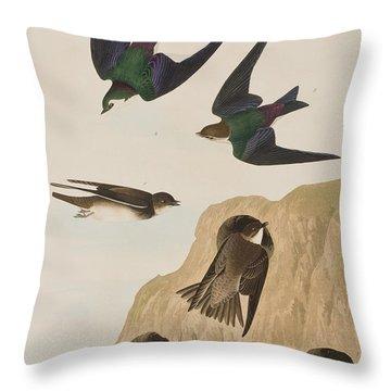 Bank Swallows Throw Pillow by John James Audubon