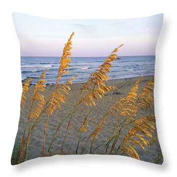 Beach Scene With Sea Oats Throw Pillow by Steve Winter