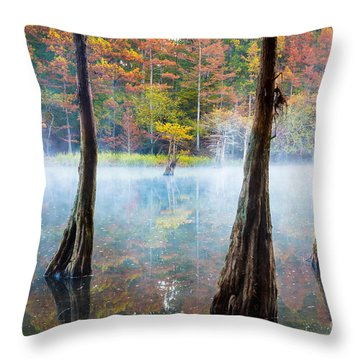 Beavers Bend Cypress Grove Throw Pillow by Inge Johnsson