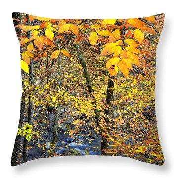 Beech Leaves Birch River Throw Pillow by Thomas R Fletcher