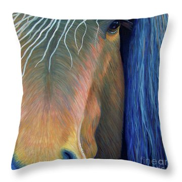 Before Sundown Throw Pillow by Brian  Commerford