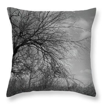 Bejeweled Vii Throw Pillow by Anna Villarreal Garbis