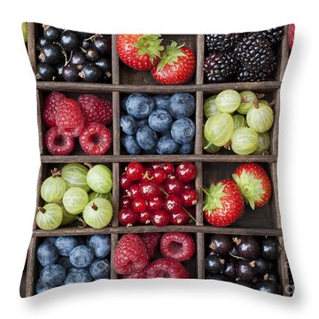 Berry Harvest Throw Pillow by Tim Gainey