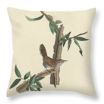 Bewick's Long-tailed Wren Throw Pillow by John James Audubon