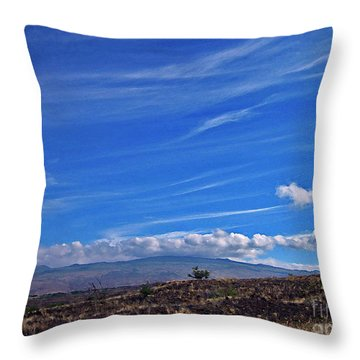 Big Island Landscape 3 Throw Pillow by Bette Phelan