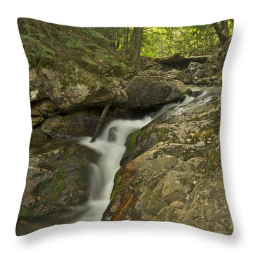 Big Pup Falls 4 Throw Pillow by Michael Peychich