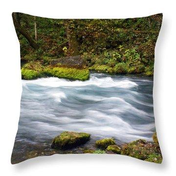 Big Spring Branch Throw Pillow by Marty Koch