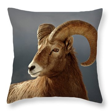 Bighorn Sheep In Winter Throw Pillow by Mark Duffy