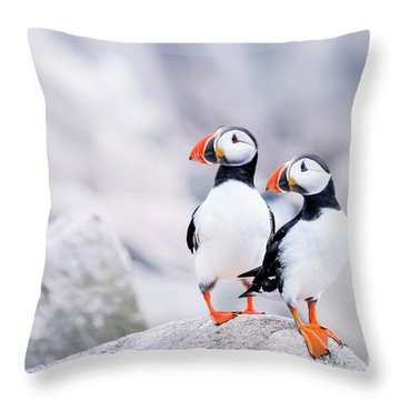 Birdland Throw Pillow by Evelina Kremsdorf