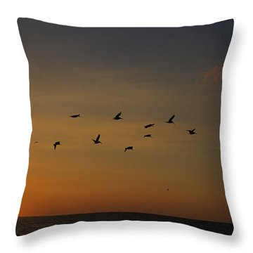 Birds Fly Into The Wind Above The Gulf Throw Pillow by Stacy Gold