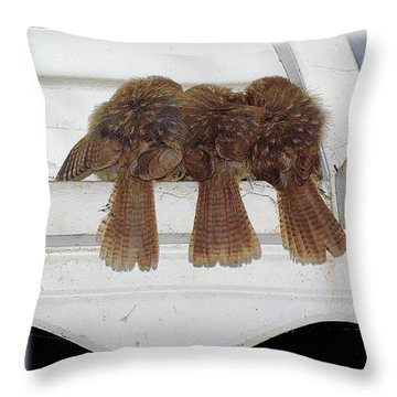 Birds Of A Feather Throw Pillow by Brian Wallace