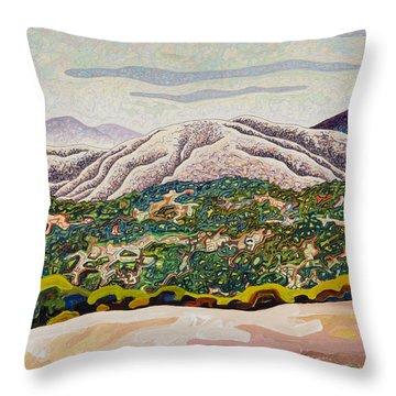 Birdseye Landscape #4 Throw Pillow by Dale Beckman