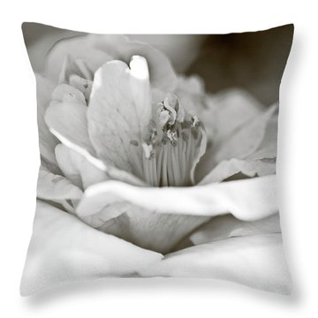 Throw Pillow featuring the photograph Black And White Camellia Flower by Frank Tschakert