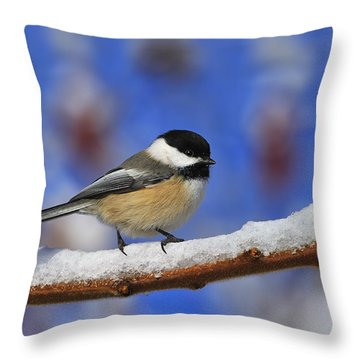 Black-capped Chickadee In Sumac Throw Pillow by Tony Beck