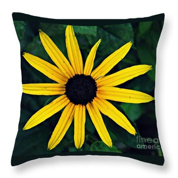 Black-eyed Susan Throw Pillow by Sarah Loft