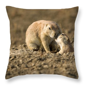 Black-tailed Prairie Dogs In Eastern Throw Pillow by Joel Sartore