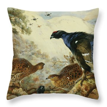 Blackgame Or Black Grouse Throw Pillow by Archibald Thorburn