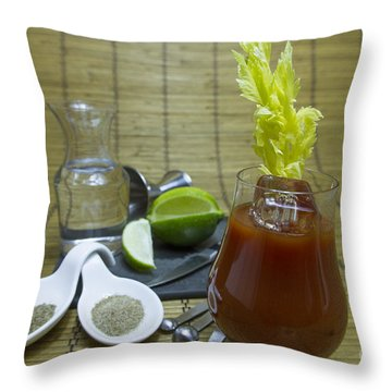 Bloody Mary Cocktail With Ingredients Throw Pillow by Karen Foley