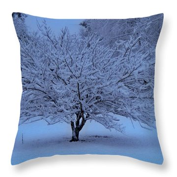 Blue Christmas Throw Pillow by Betty Northcutt