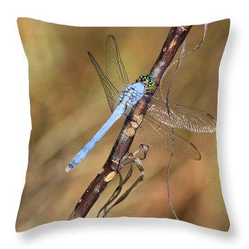 Blue Dragonfly Portrait Throw Pillow by Carol Groenen