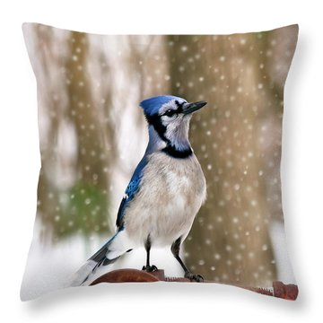 Blue For You Throw Pillow by Evelina Kremsdorf