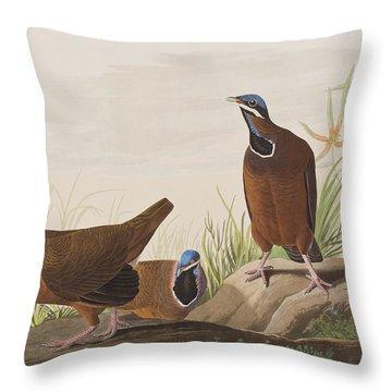 Blue Headed Pigeon Throw Pillow by John James Audubon