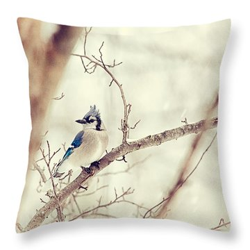 Blue Jay Winter Throw Pillow by Karol Livote