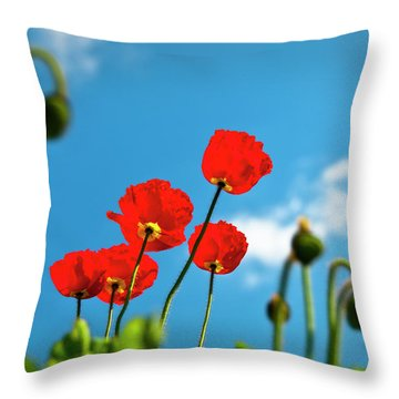Blue Sky And Poppies Throw Pillow by Tamyra Ayles