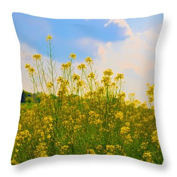 Blue Sky Yellow Flowers Throw Pillow by Bill Cannon