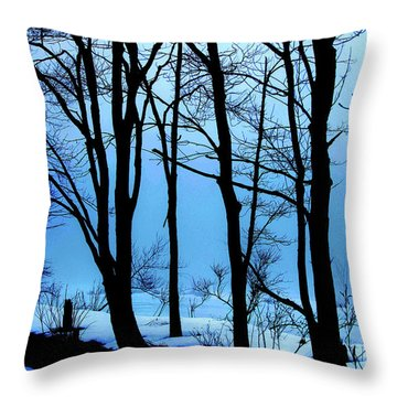 Blue Woods Throw Pillow by Karol Livote