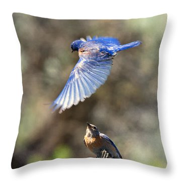 Bluebird Buzz Throw Pillow by Mike Dawson
