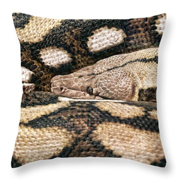 Boa Constrictor Throw Pillow by Tom Mc Nemar