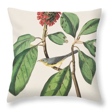 Bonaparte's Flycatcher Throw Pillow by John James Audubon