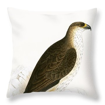 Bonelli's Eagle Throw Pillow by English School