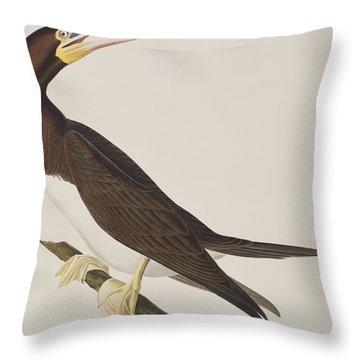 Booby Gannet   Throw Pillow by John James Audubon