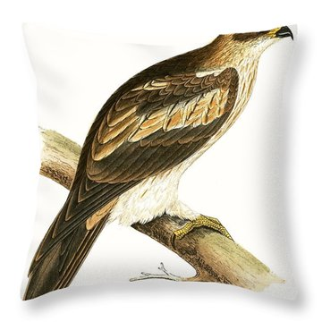 Booted Eagle Throw Pillow by English School