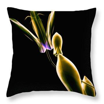 Botanical Study 1 Throw Pillow by Brian Drake - Printscapes
