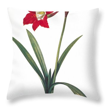 Botany: Lily Throw Pillow by Granger
