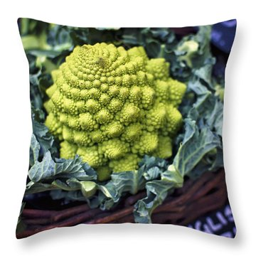 Brassica Oleracea Throw Pillow by Heather Applegate