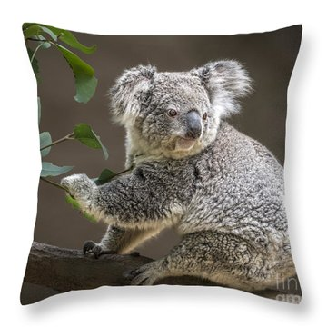 Breakfast Throw Pillow by Jamie Pham