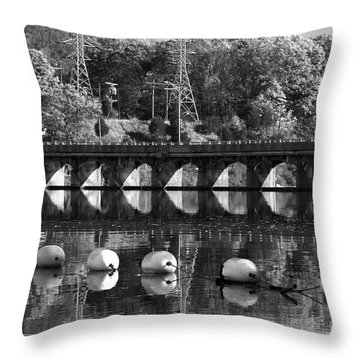 Bridge Reflection Throw Pillow by Karol Livote