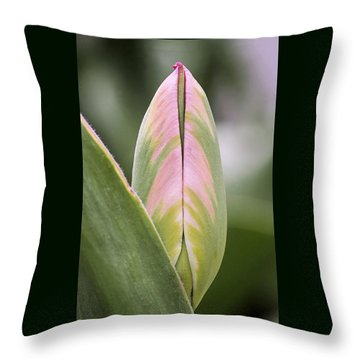 Budding Beauty Throw Pillow by Rona Black