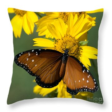Butterfly Kisses Throw Pillow by Charles Dobbs